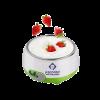 Automatic Yogurt (Doi) Maker XH-102 2834