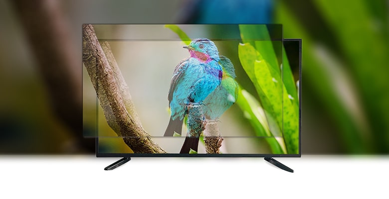32 inch Double Glass LED TV